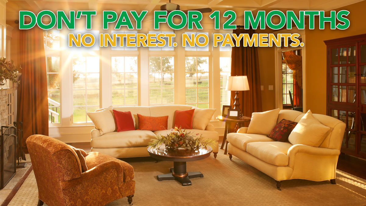 Don't Pay for 12 Months. No Interest. No Payments.
